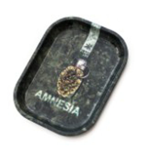 achat cbd Plateau Amnésia