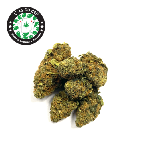 achat cbd Orange Bud – Fleurs de CBD